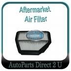 Holden Captiva (most) Air Filter